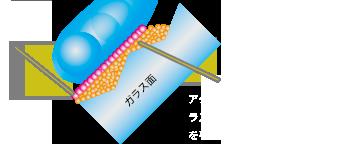 アクセラレーターを使用したガラス撥水でのフッ素被膜のイラスト。ガラス面の凹凸を平滑化